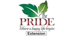 Pride Extension